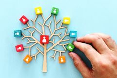 Business image of wooden tree with people icons over blue table, human resources and management concept.  stock photos