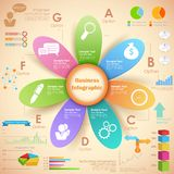 Business Infographics Chart Stock Images