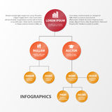 Business Infographics circle origami style. can be used for workflow layout, banner, diagram, number options, step up Royalty Free Stock Photography