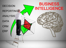 Business intelligence concept drawn by a man on a ladder Royalty Free Stock Photography