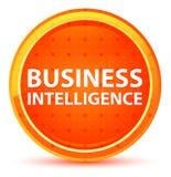 Business Intelligence Round Naturalny Pomarańczowy guzik ilustracji