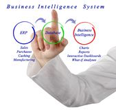 Business Intelligence System. Woman presenting Business Intelligence System Royalty Free Stock Photos
