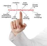 Business Intelligence systemy Zdjęcia Royalty Free