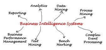 Business Intelligence systemy Obraz Stock
