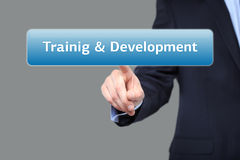 Business, internet  concept - businessman pressing training and development button on virtual screens Stock Photos