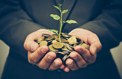 Business investment with csr practice. Hands of business man holding a tree growing on golden coins - business investment with csr practice royalty free stock photos