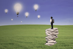 Business kid stand on books looking at lightbulbs outdoor Royalty Free Stock Image