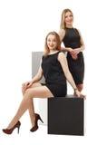 Business ladies posing smiling at camera Stock Image