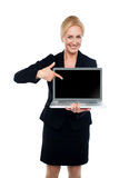 Business lady indicating towards laptop screen Royalty Free Stock Photography