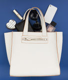 Business lady purse Royalty Free Stock Image