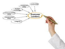 Business Leaders. Presenting  features of Business Leaders Royalty Free Stock Image