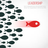 Business leadership vector concept with red leader fish and winning team Royalty Free Stock Images
