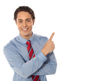 Business male pointing upwards Stock Images