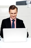 Business male watching videos on laptop Royalty Free Stock Photo