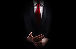 Business Man. A business man with a black suit and a red tie over a white shirt stock image