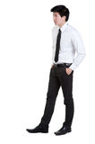 Business man Attractive smart. In isolated Royalty Free Stock Image