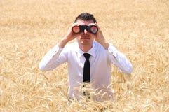 Business Man with binocular stock photos