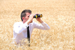 Business Man with binocular Royalty Free Stock Photos