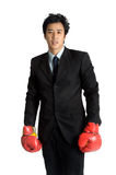 Business man  boxing glove suit Royalty Free Stock Images