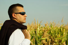 Business man in a corn field Royalty Free Stock Photo