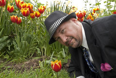 Business man face tulips Royalty Free Stock Photo