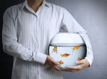 Business man with goldfishes Stock Photos
