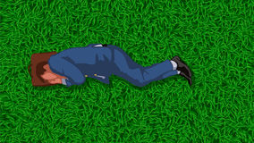 Business man on grass Royalty Free Stock Photo