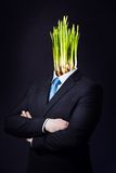 Business Man with Green Daffodil Head Stock Photo