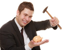 Business man with hammer about to smash piggy bank. Money saving concept. Happy funny business man guy with hammer about to smash piggy bank isolated on white Stock Image