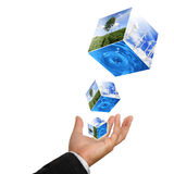 Business man hand holding with nature stock image