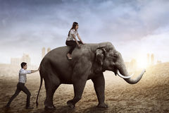 Business man help pushing elephant while his friend sit on it Stock Photo