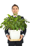 Business man holding a big vase with plant Stock Photos