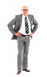 Business man, isolated on white background Stock Photography