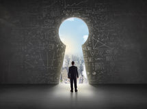 Free Business Man Looking At Keyhole With Bright Cityscape Concept Stock Photo - 78008040
