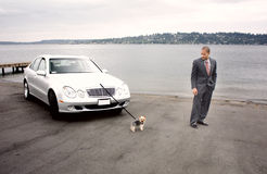 Business Man Luxury Car and Dog at Lake. Next to a pier royalty free stock image