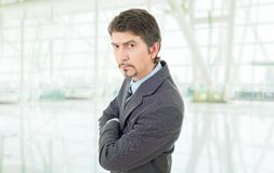 Business man. Mad business man portrait at the office Royalty Free Stock Photo