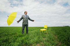 Business man in a meadow Royalty Free Stock Photo