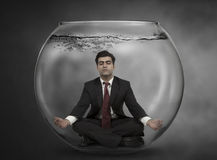 Business man meditates Royalty Free Stock Images