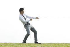Business man playing tug of war Stock Image