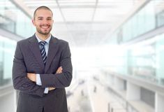Business man portrait isolated on office royalty free stock images