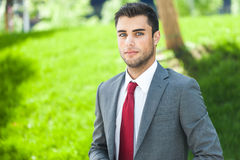 Business man portrait Royalty Free Stock Image