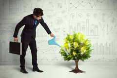 Business man pouring water on lightbulb growing tree Stock Photography