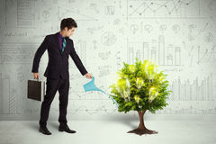 Business man pouring water on lightbulb growing tree Royalty Free Stock Photography