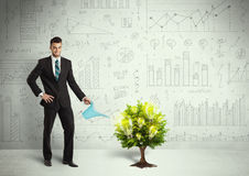 Business man pouring water on lightbulb growing tree Stock Photo
