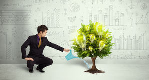 Business man pouring water on lightbulb growing tree Stock Image