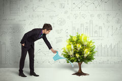 Business man pouring water on lightbulb growing tree Royalty Free Stock Images