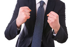 Businessman punching the air. Royalty Free Stock Images