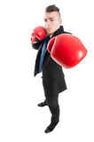Business man punching the camera with boxing gloves Royalty Free Stock Photos