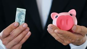Business man putting money in piggy bank, rich investor making contribution. Stock footage stock video footage