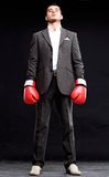 Business man ready to fight with boxing gloves - isolated Stock Image